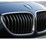 Бъбреци/решетки за BMW