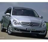 Стелки за Mercedes R-Class W251