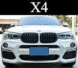 Бъбреци за BMW X4
